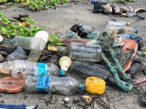 plastic bottles at the beach, plastic trash at the beach